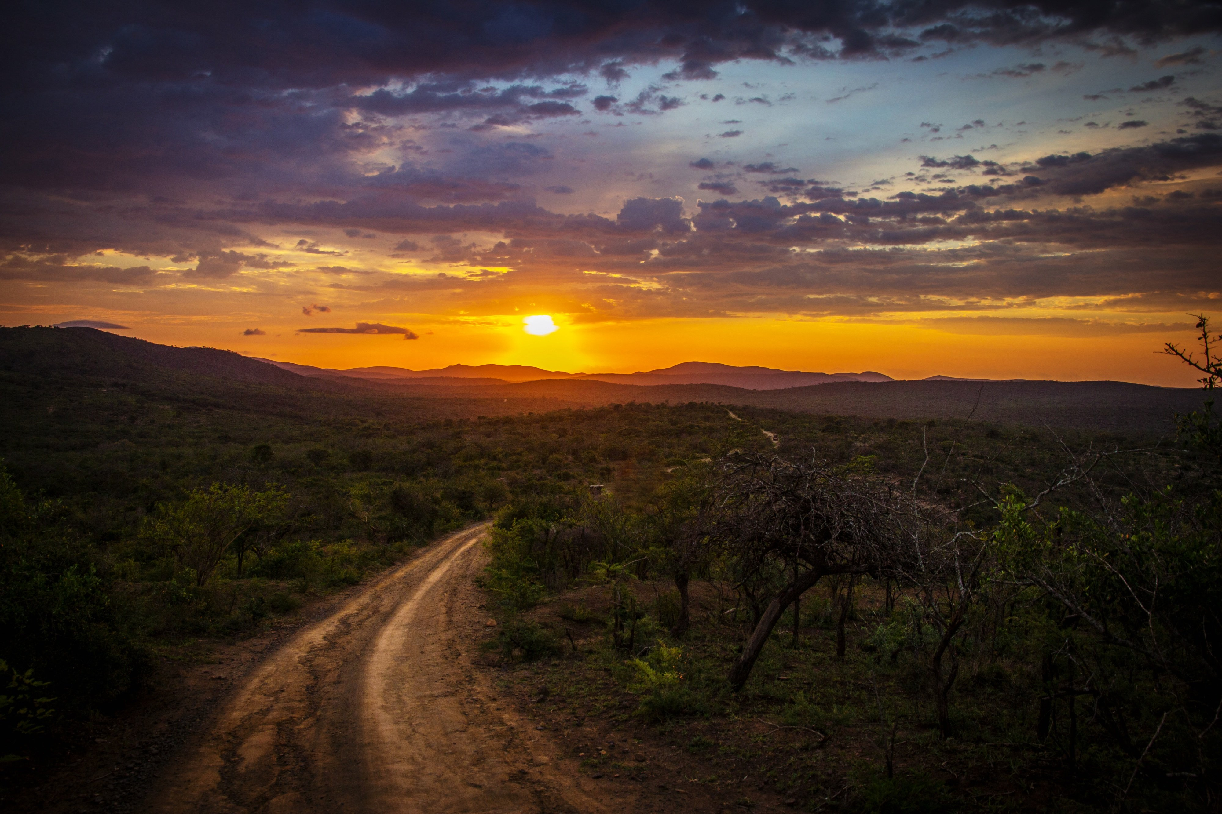 Accaparramento delle terre in Africa