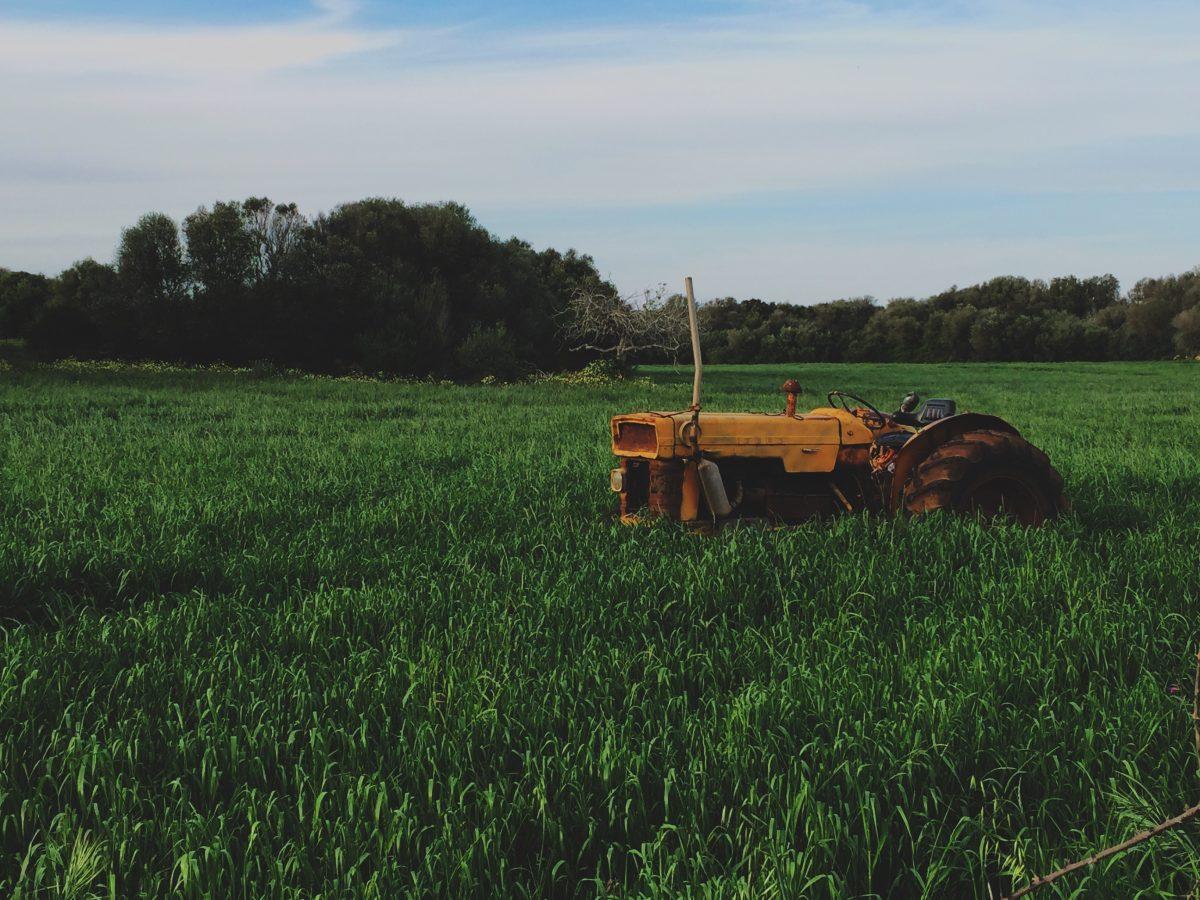 passaggio generazionale in agricoltura
