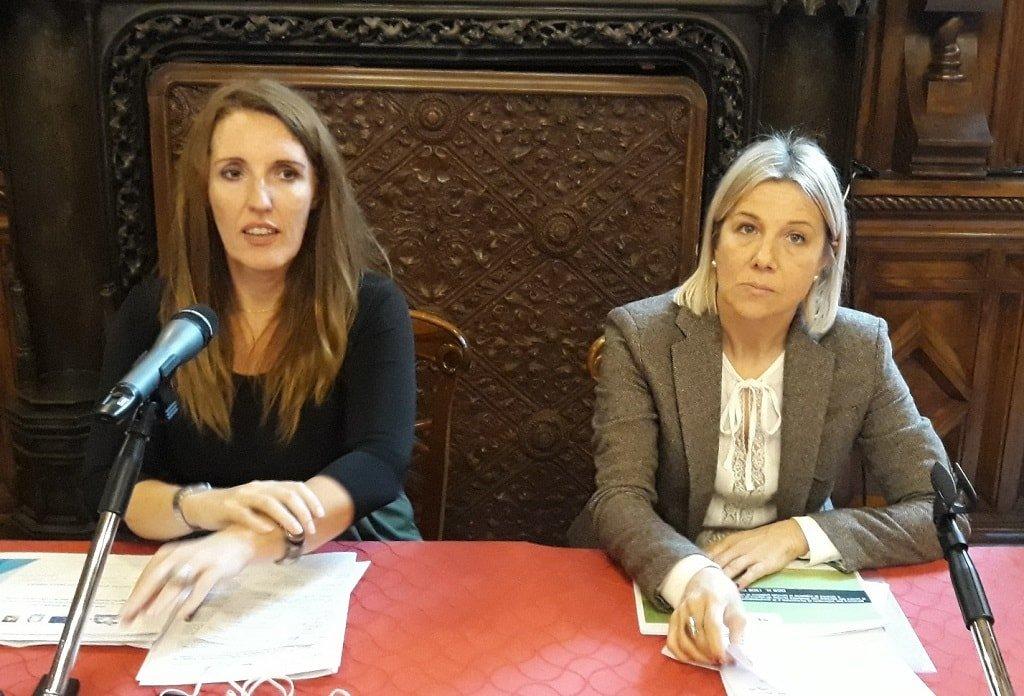 disabilità Piano regionale collocamento disabili - Assessore Donazzan e assessore Lanzarin