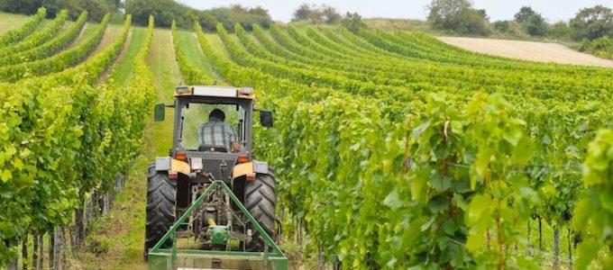 istituti agrari agricoltura sviluppo rurale