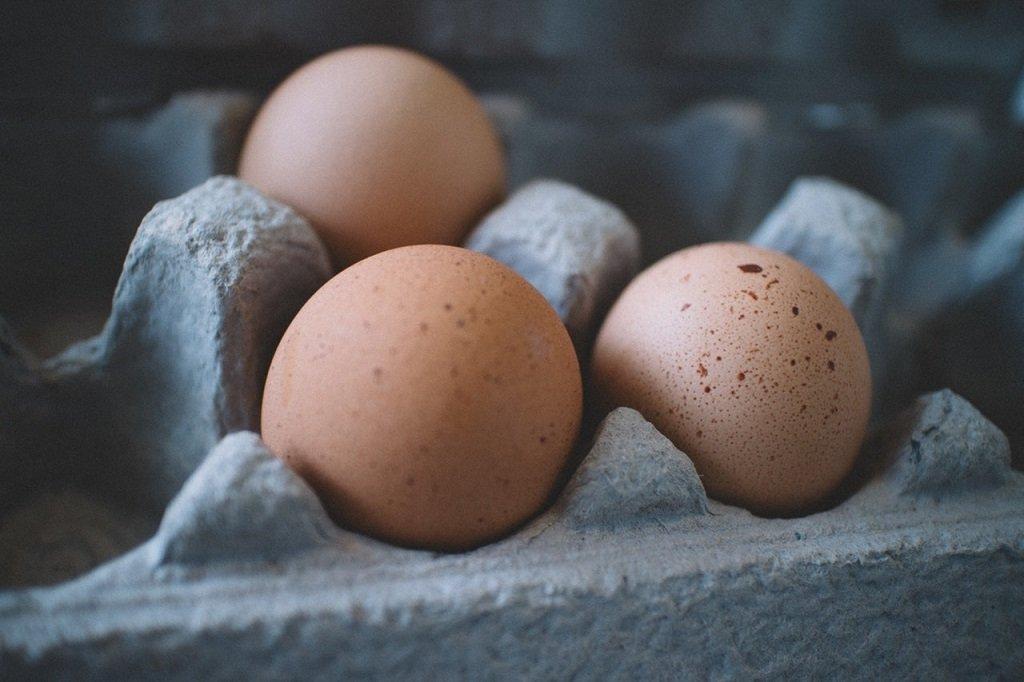 aviaria uova