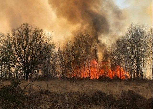 brucia riserva naturale Piemonte