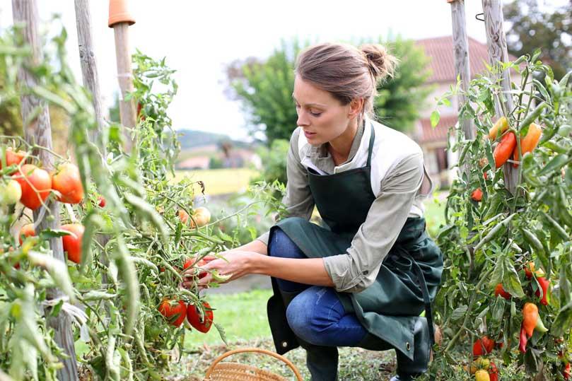 giovani nei campi agricoltura coldiretti