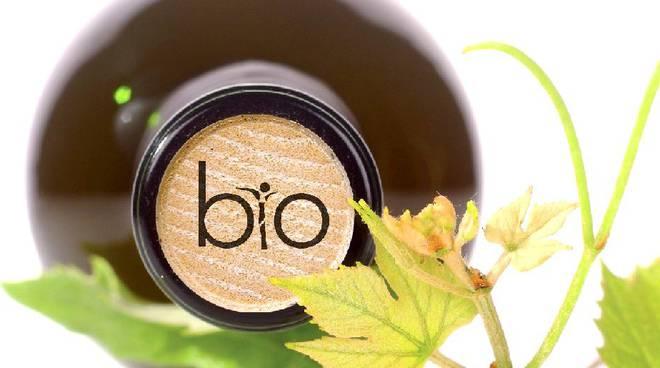 vino biologico prodotti bio