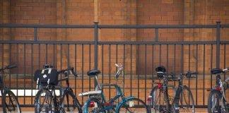 lavoro in treno e bici pieghevole regione veneto