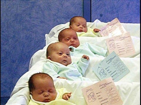 veneto sostegno delle nascite