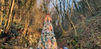 albero rifiuti lugo