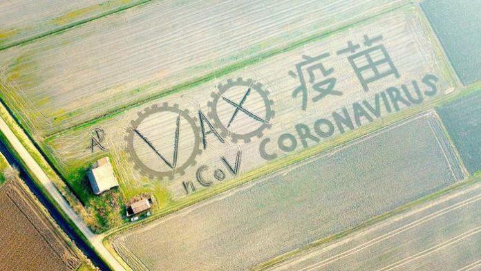 land art coronavirus dario gambarin