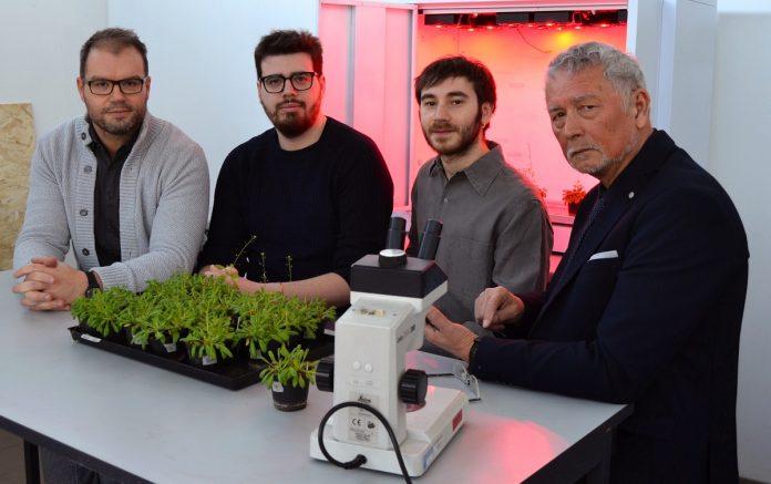 Il-team-di-ricerca-del-dipartimento-di-Biotecnologie