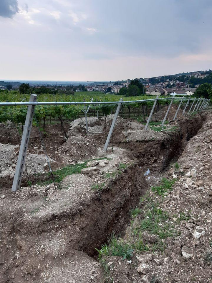 negrar pavimento villa romana