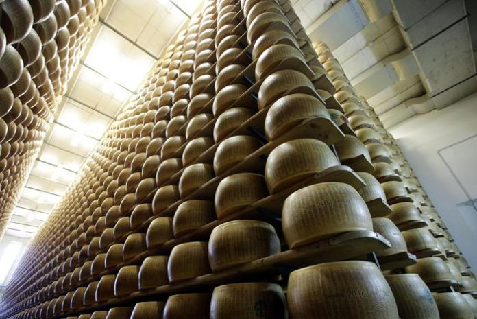 parmigiano reggiano parmareggio grana padano agriform-parmigiano