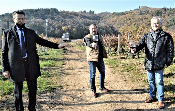 Maurizio Alfeo, Enrico Finetto e Massimo Mariotti il senso della vite serit settimana europea riduzione rifiuti vino vendemmia uva colline viti vite vitigno vitigni