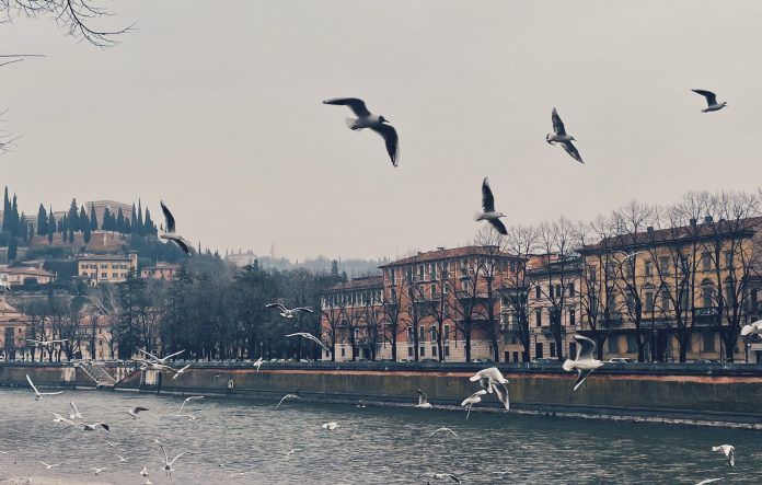 Lungadige Verona