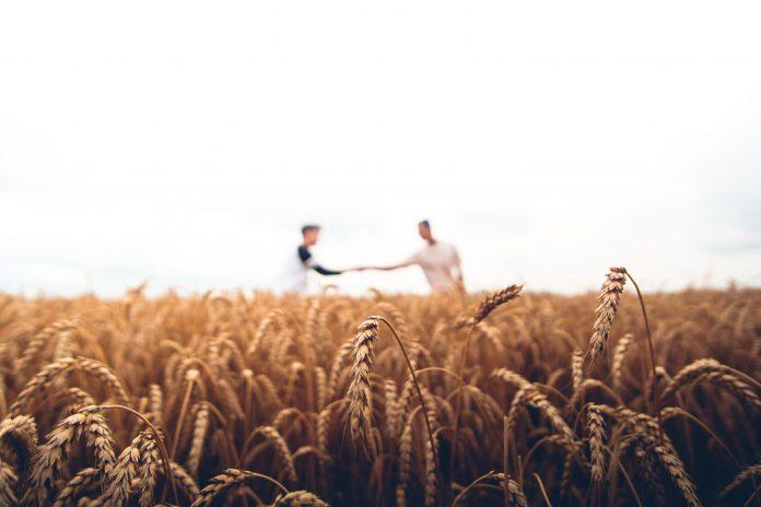 agricoltura agricoltori contadini campi ricambio generazionale