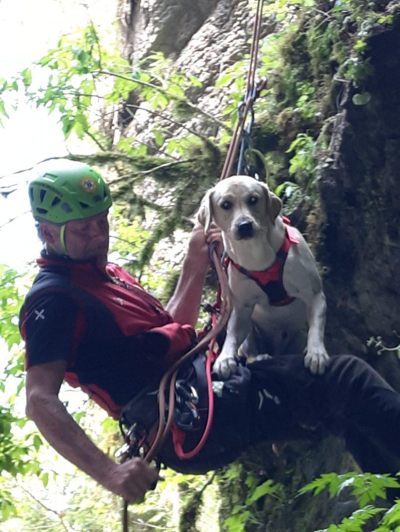 Unità cinofile cani soccorso