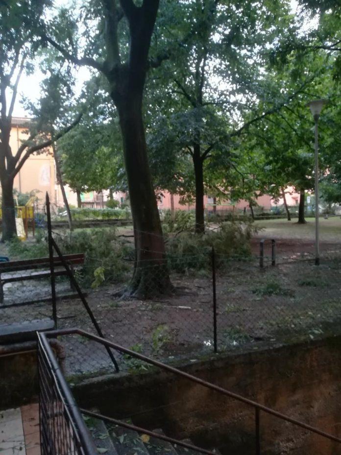 Allagamento in via Roveggia a Verona, foto dal lettore Flavio Benini