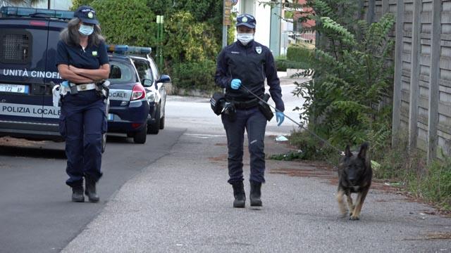 Cani antidroga della Polizia Locale di Verona
